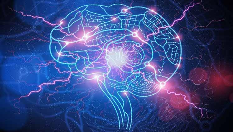 Epilepsia sin convulsiones si se diagnostica y trata adecuadamente ...